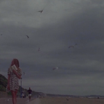 nowness video the sea close by by albert camus_screenshot