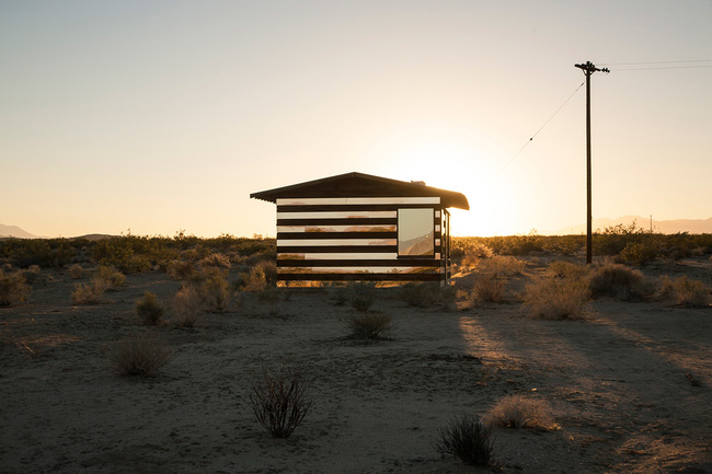 lucid stead by philip k smith_1