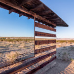 lucid stead by philip k smith_5